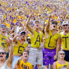 Sep 19, 2015; Baton Rouge, LA, USA; LSU Tigers fans celebrate in the stands during the second half of a game against the Auburn Tigers at Tiger Stadium. LSU defeated Auburn 45-21. Mandatory Credit: Derick E. Hingle-USA TODAY Sports